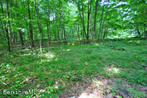 Oxbow Rd, Egremont, MA 01252
