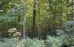 Lot 131 Partridge Ln, Becket, MA 01223