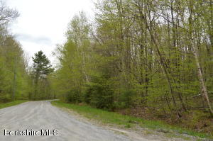 Gentian HOLLOW, Becket, MA 01223