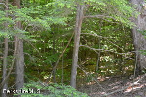 Lot 204 Moberg, Becket, MA 01223
