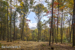 3C Dugway Rd, Stockbridge, MA 01262