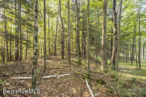3D Dugway Rd, Stockbridge, MA 01262