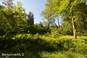 Lot 7 Mountain Rd, Mt Washington, MA 01258