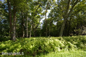 Lot 11 Mountain Rd, Mt Washington, MA 01258