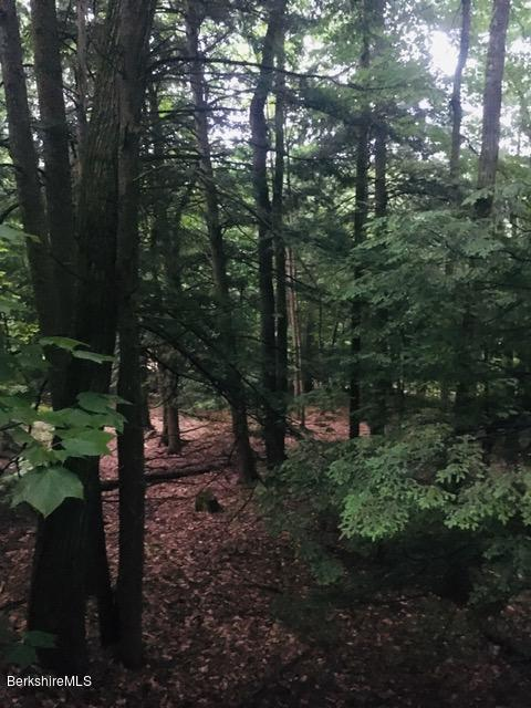 Property located at 0 Broderick Rd Monterey MA 01245 photo