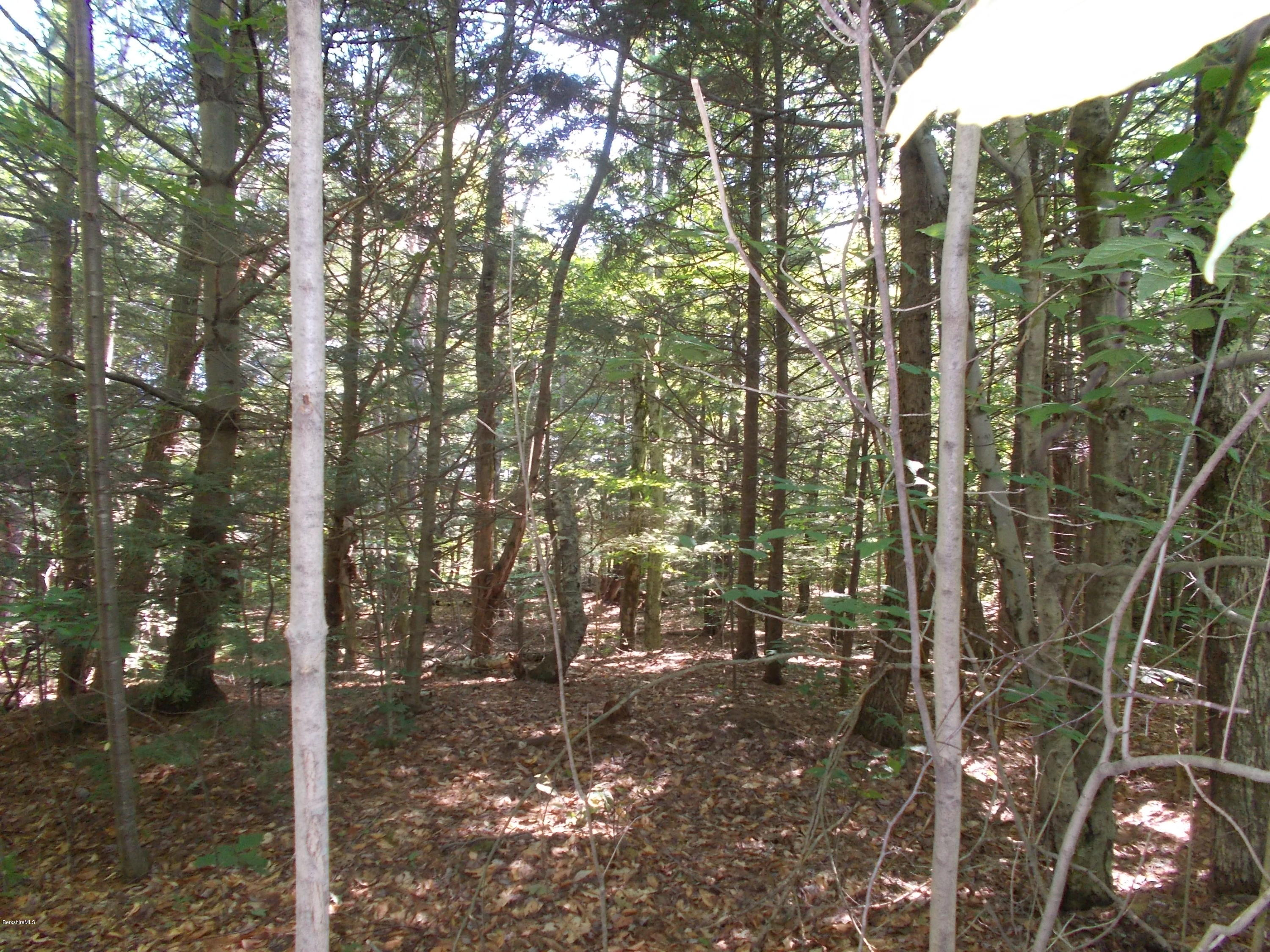 0 Mountain Pasture MLS 231917 Rd Becket MA 01223