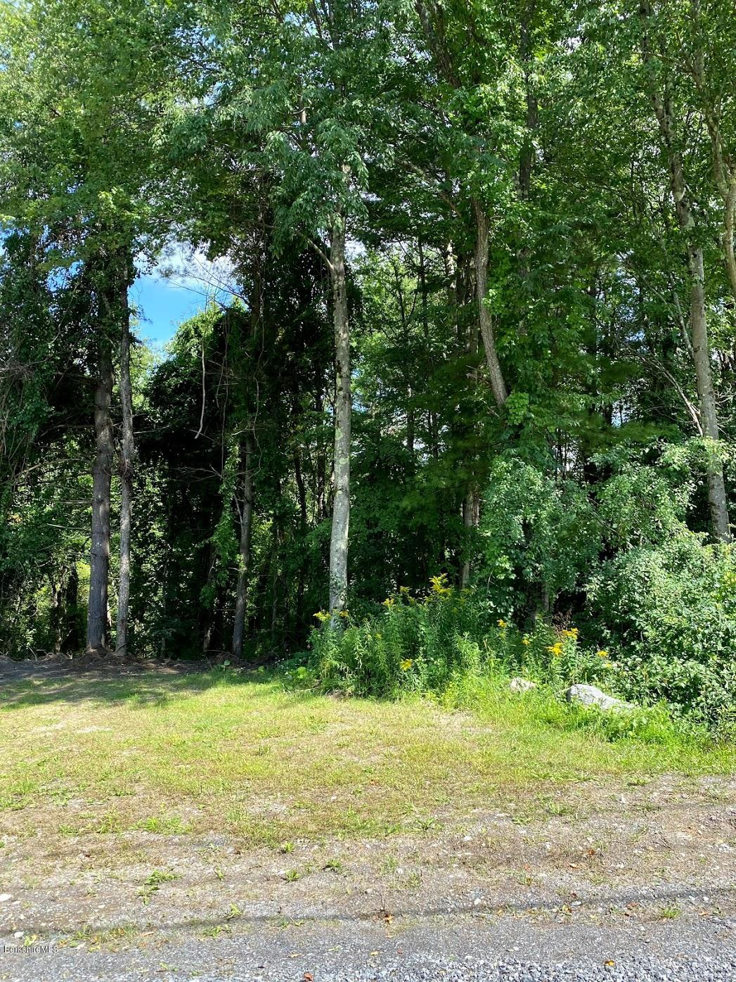 Property located at 0 Greenwood Cir Egremont MA 01258 photo