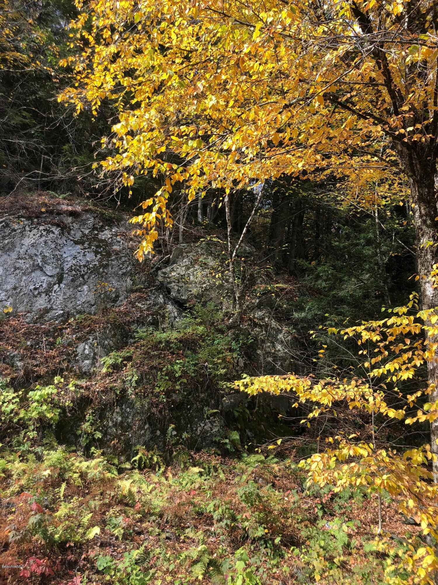 Property located at 40 East Alford Road Rd West Stockbridge MA 01266 photo