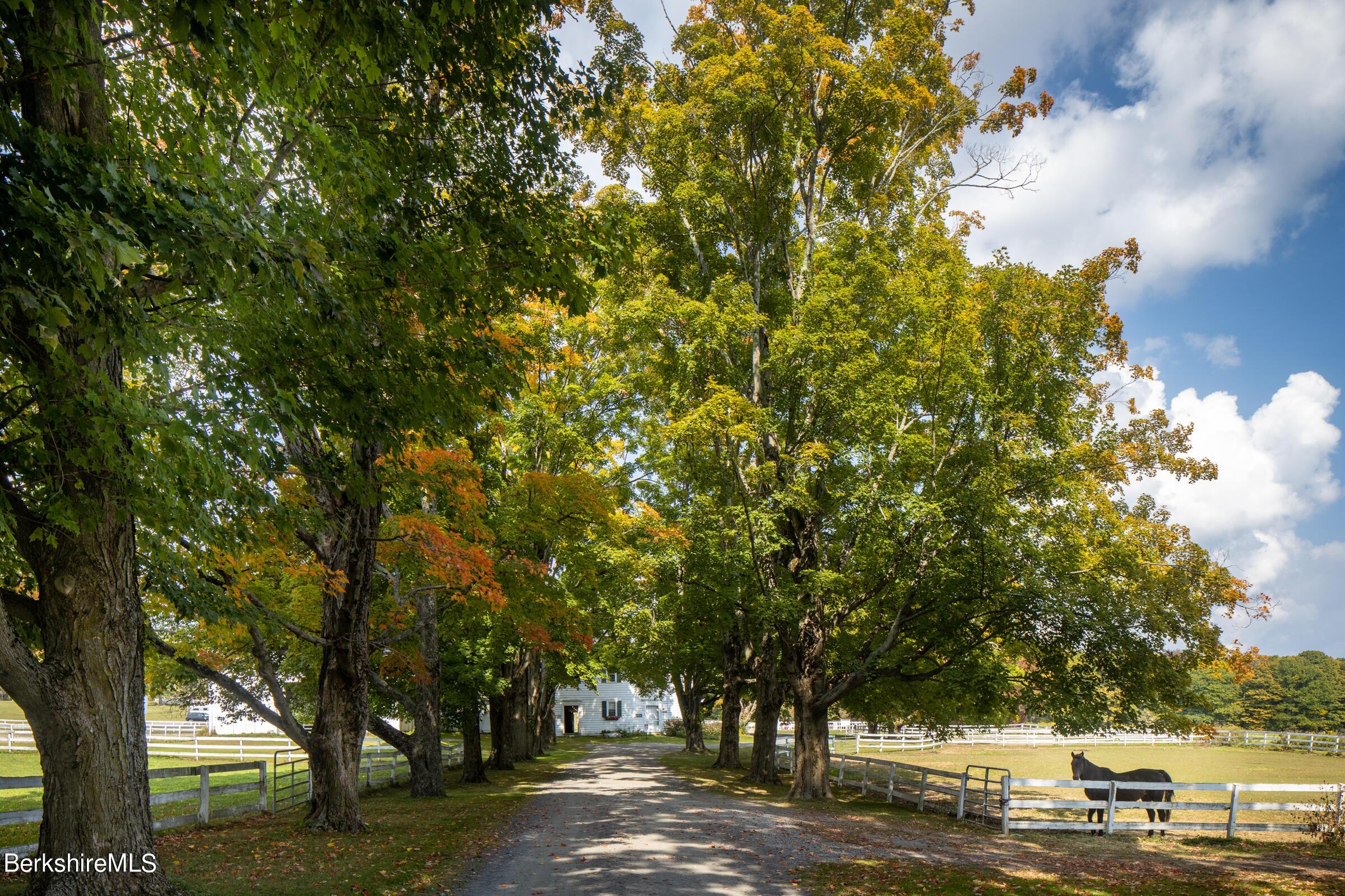Perry Peak Rd Richmond MA 01254