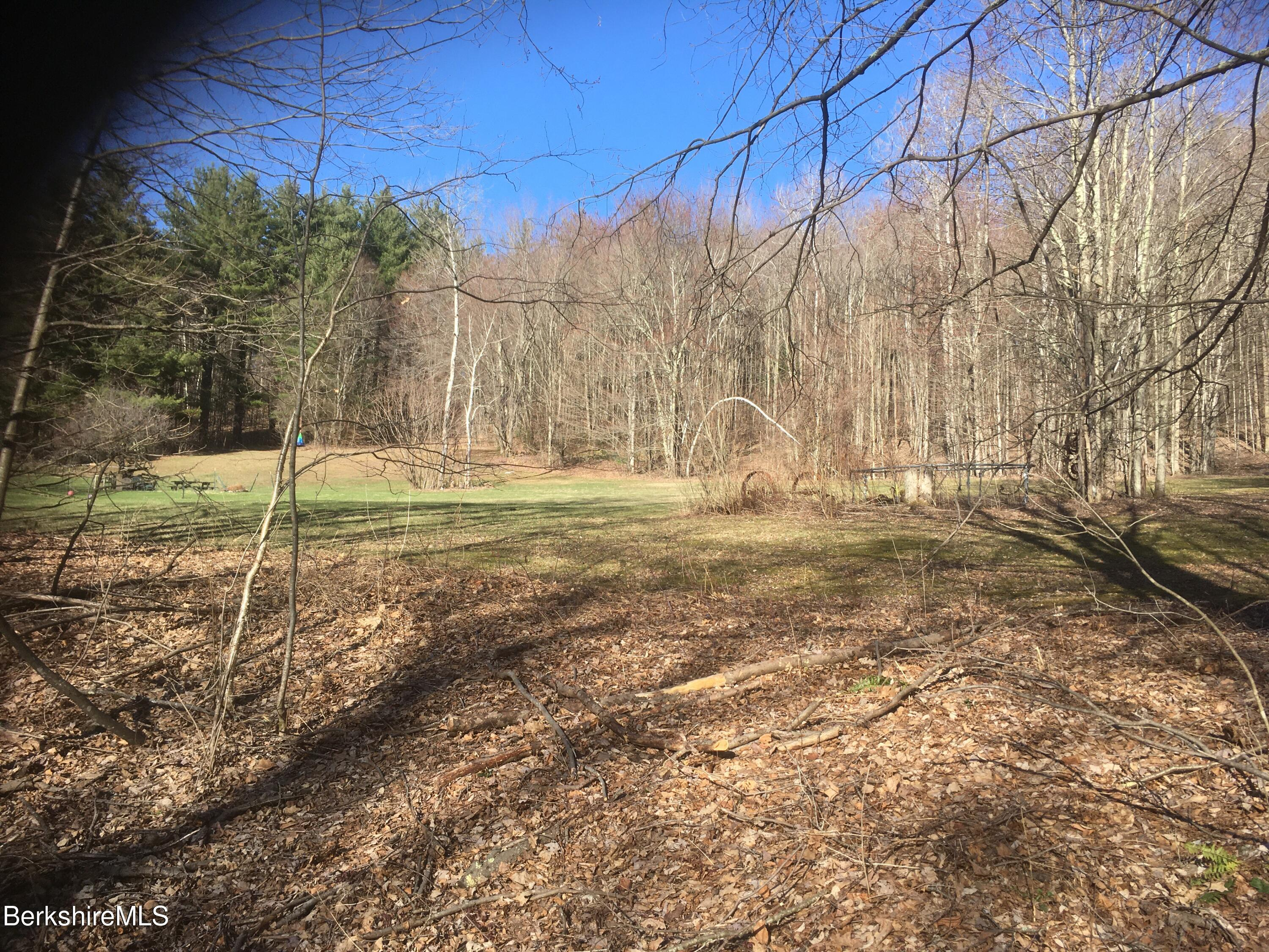 Property located at 2 Roys Rd New Ashford MA 01237 photo
