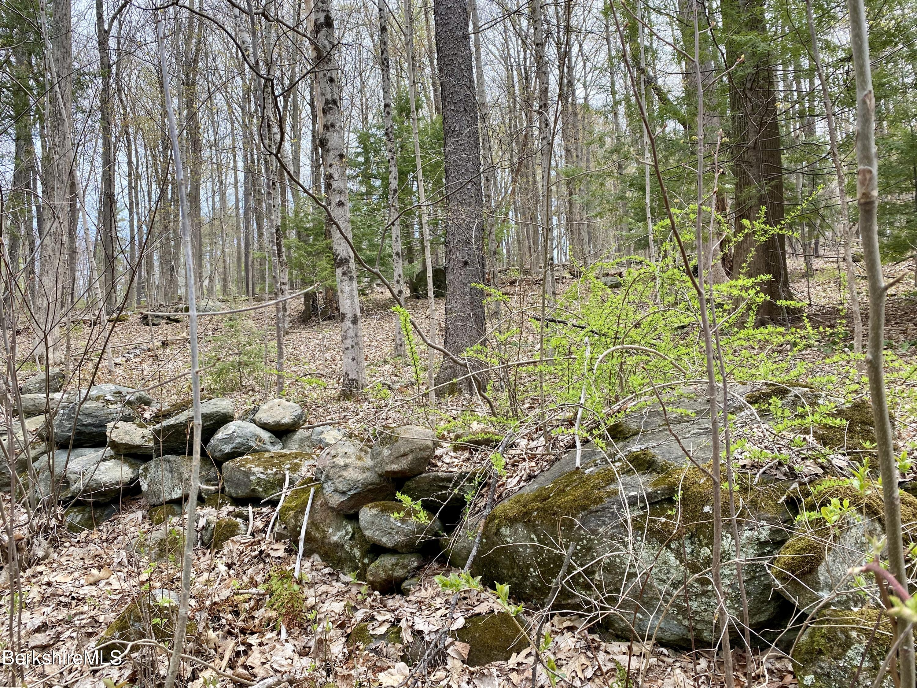 Property located at 0 Pixley Hill Rd West Stockbridge MA 01266 photo
