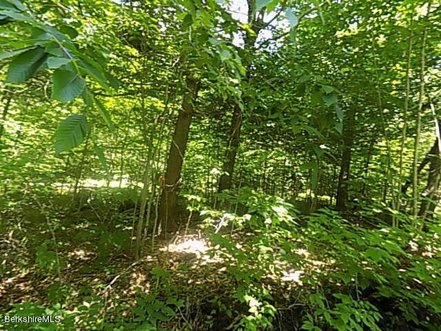 0 Deer Trail Becket MA 01223