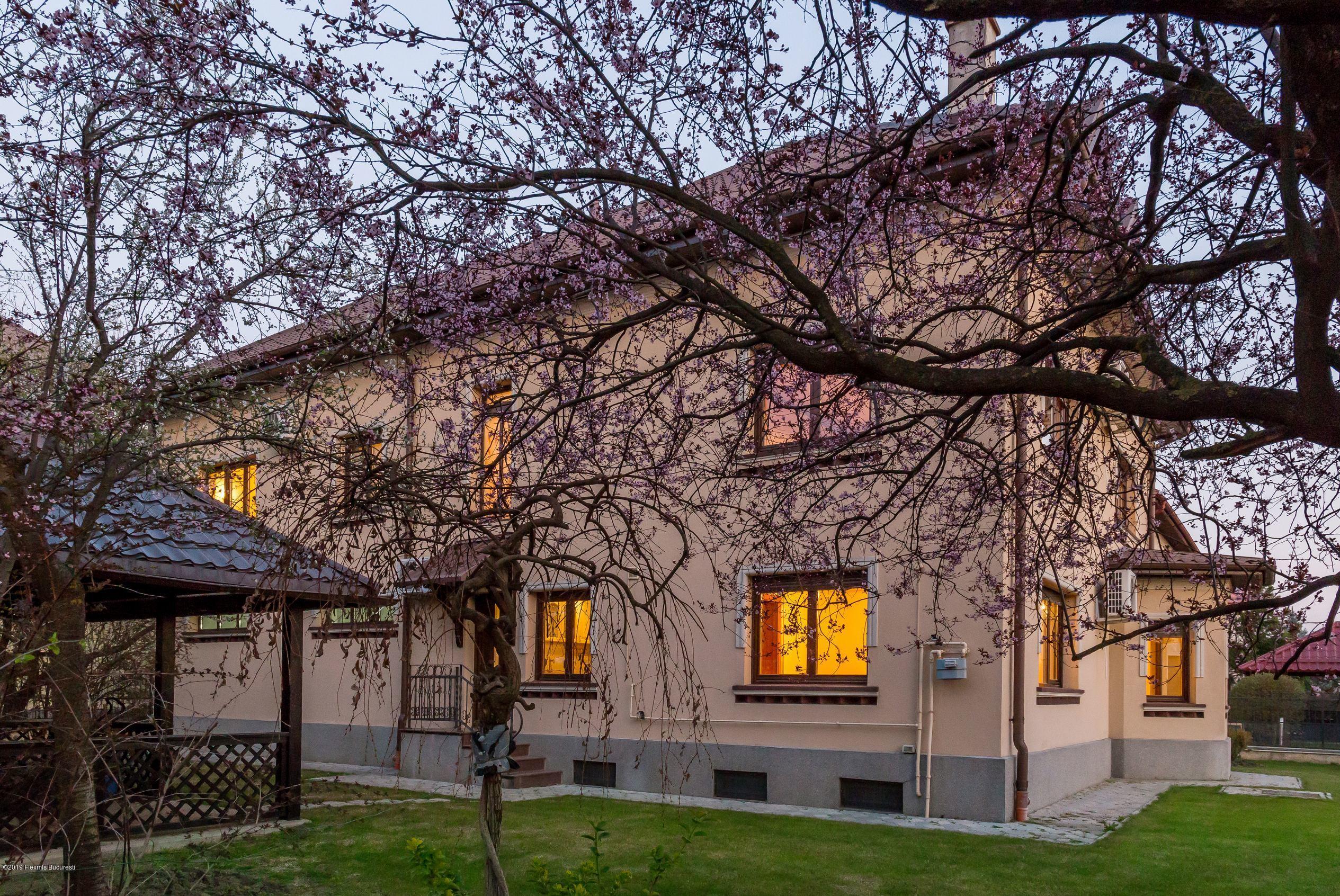 Vanzare Casa 480 m²