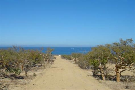 East Cape, ,Land,For Sale,..,10-258