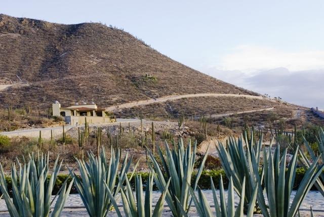 La Paz, ,Land,For Sale,Calle del Marmol,11-1095
