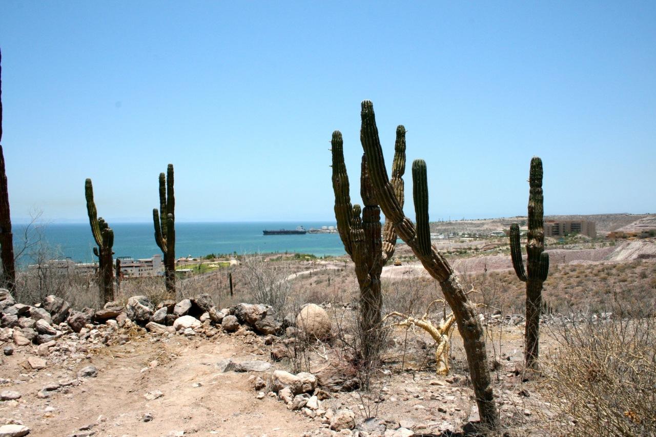 La Paz, ,Land,For Sale,Cerrada del Diamante Pedregal,12-1117