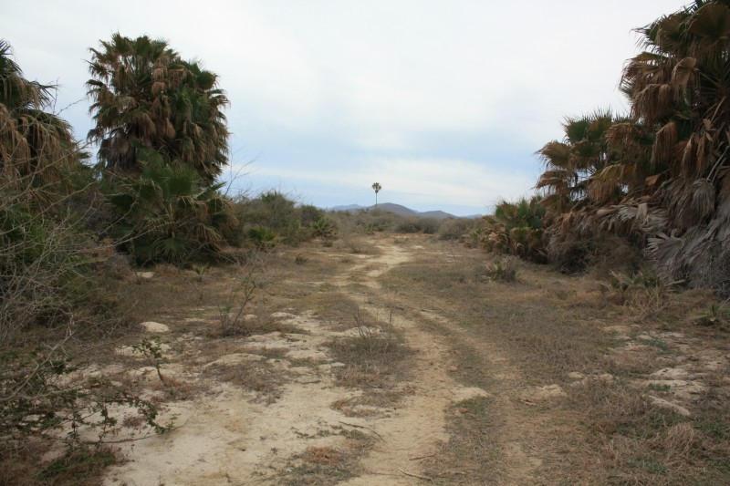 Rancho Los Pinos/ El Surgidero-6