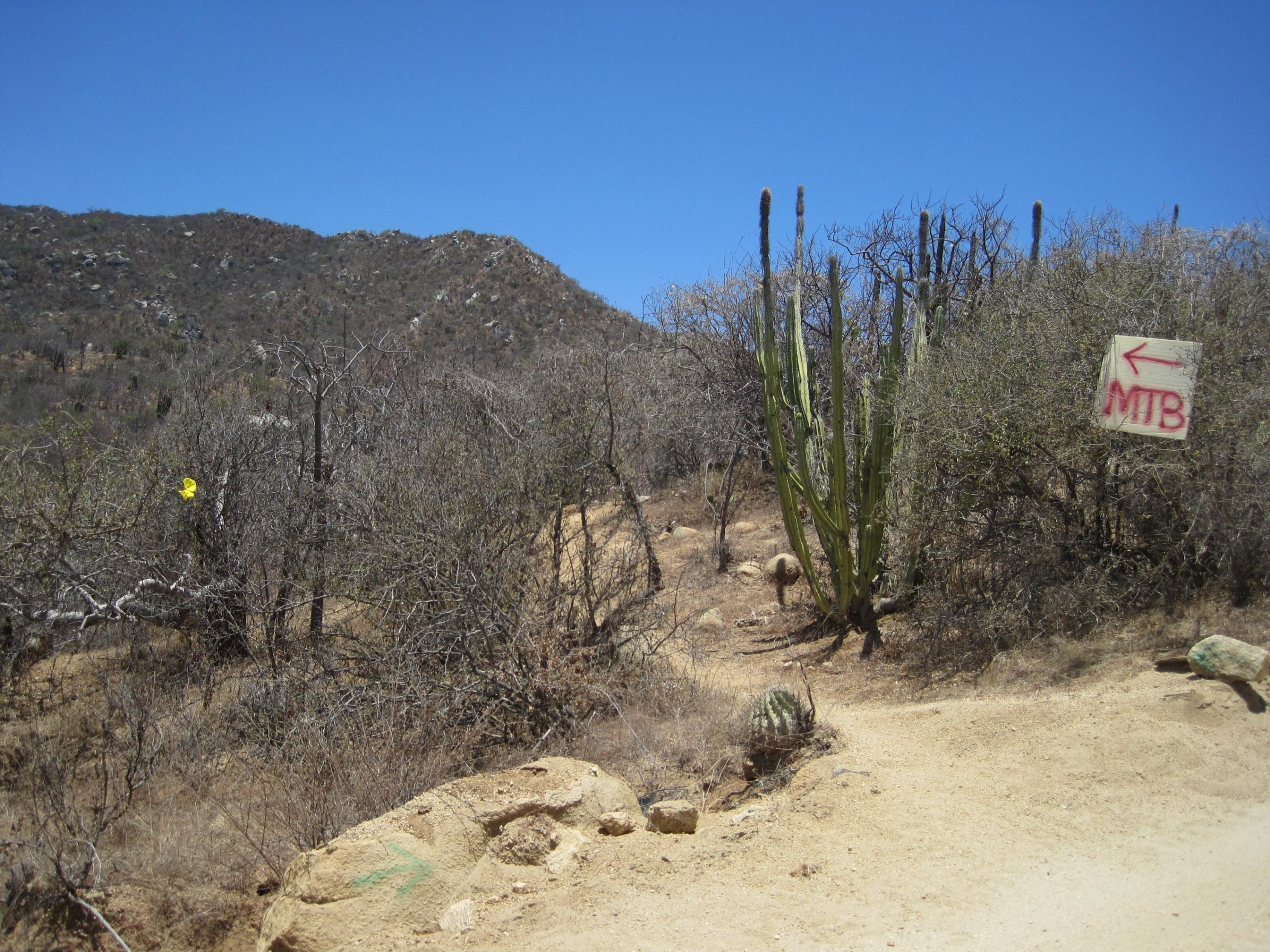 Rancho La Soledad-1