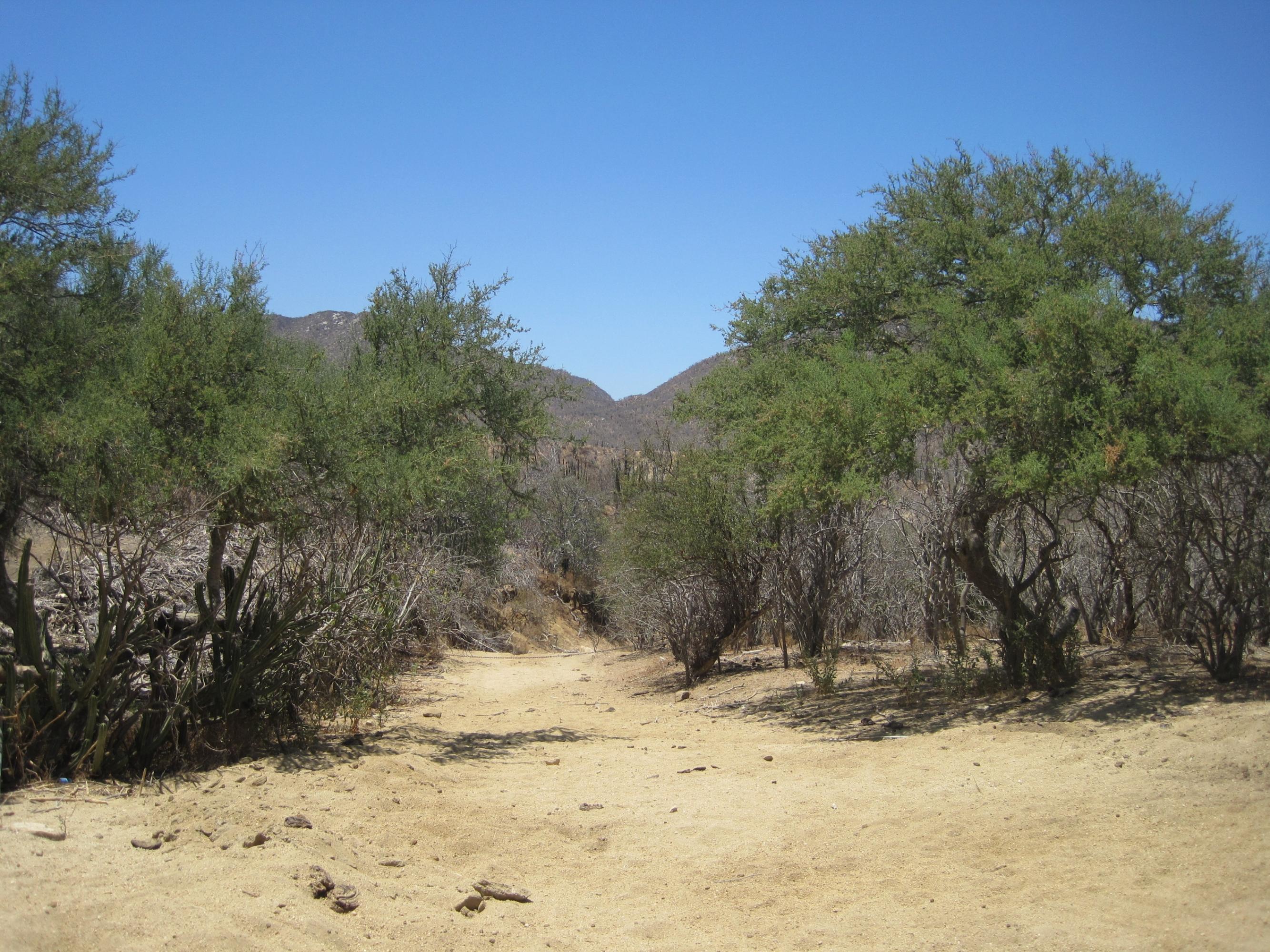 Rancho La Soledad-4
