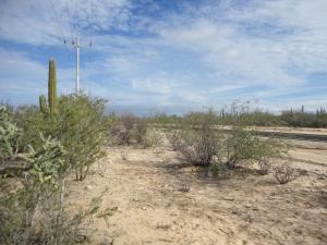 La Ventana COMMERCIAL LOT Main St   property for sale