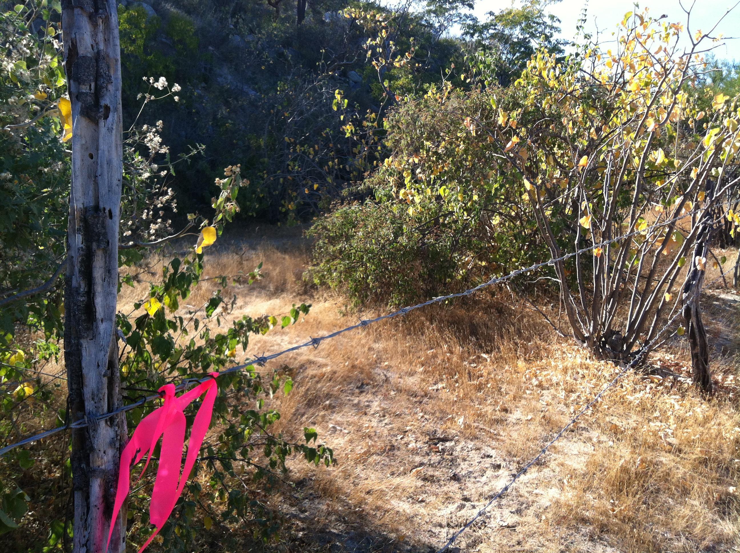 Montecito View Lot #5-1
