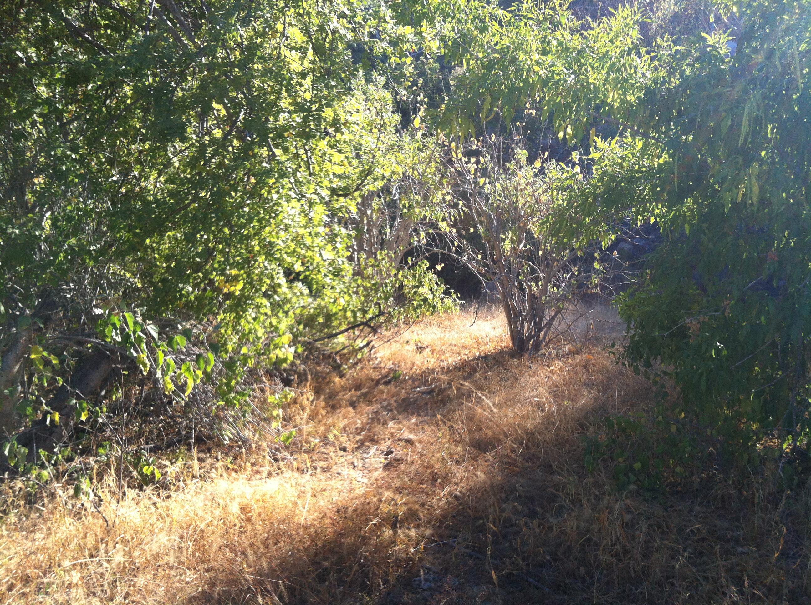 Montecito View Lot #5-3