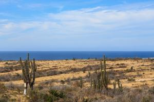 Calle sin Nombre Ahorcadita to La Pastora Ocean   property for sale