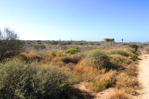 Calle Sin Nombre Cardon Lot La Playa #7   property for sale