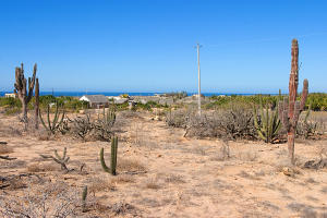 Calle Torote Cardon Lot #0819   property for sale