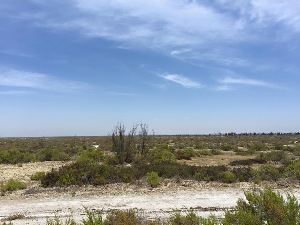 Beachfront Meliton Albanez-16