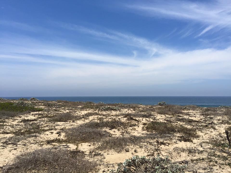Beachfront Meliton Albanez-23