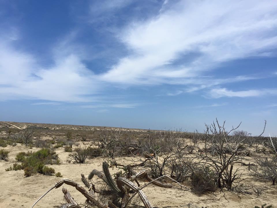 Beachfront Meliton Albanez-34