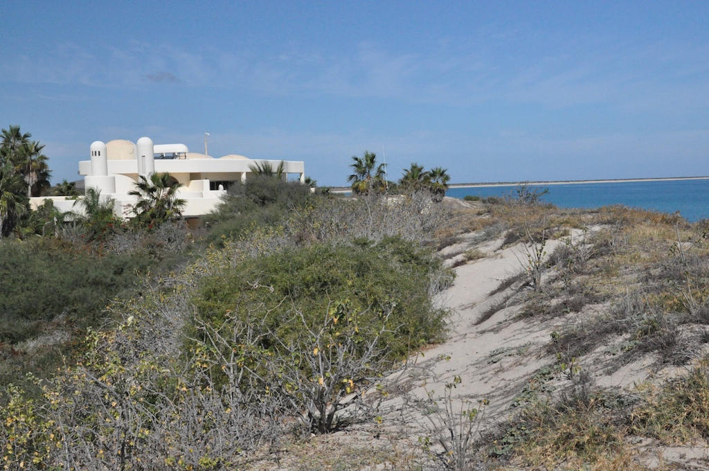 East Cape, ,Land,For Sale,Camino vecinal,15-2427