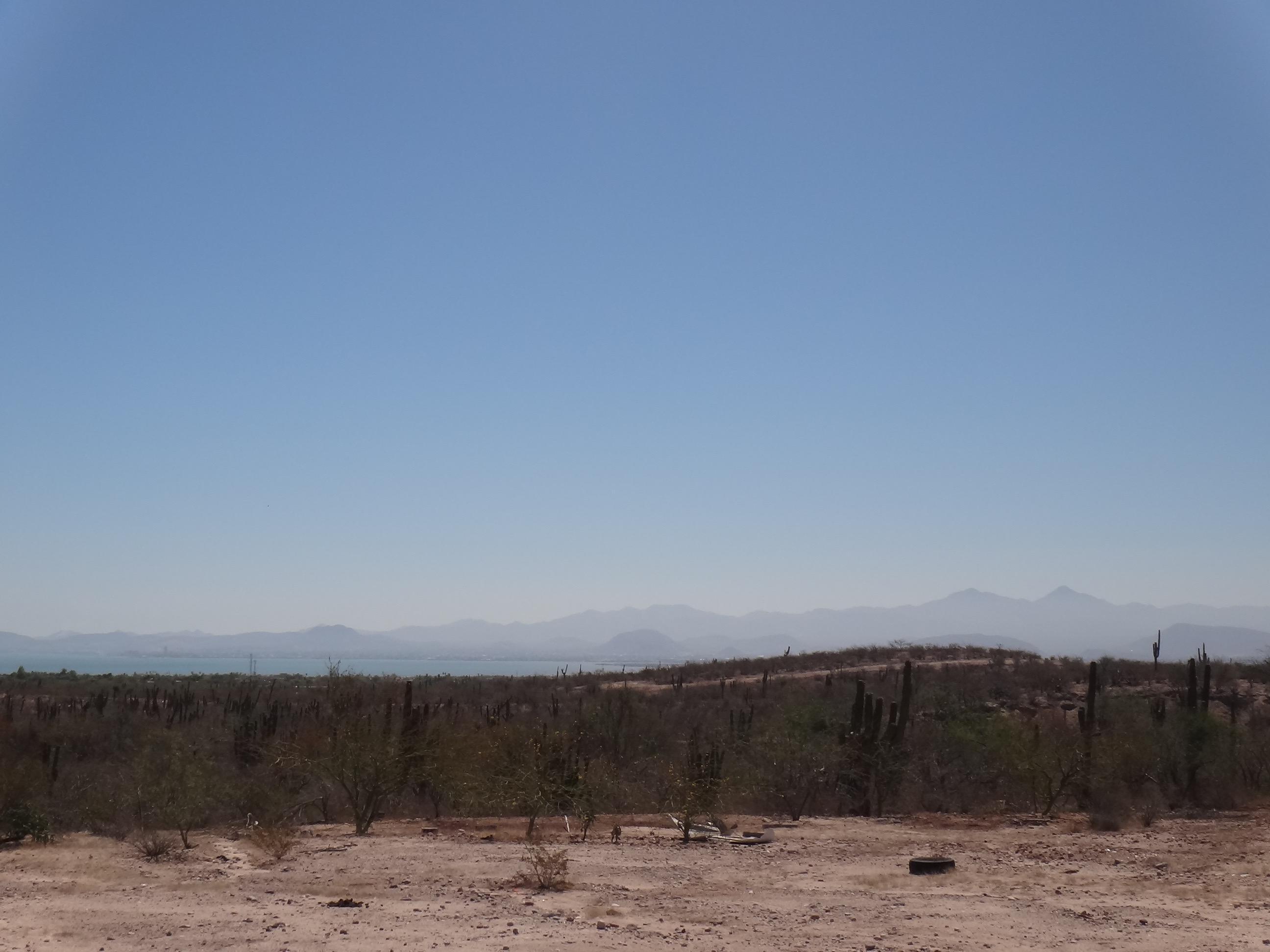 Predio Los Aripez-19