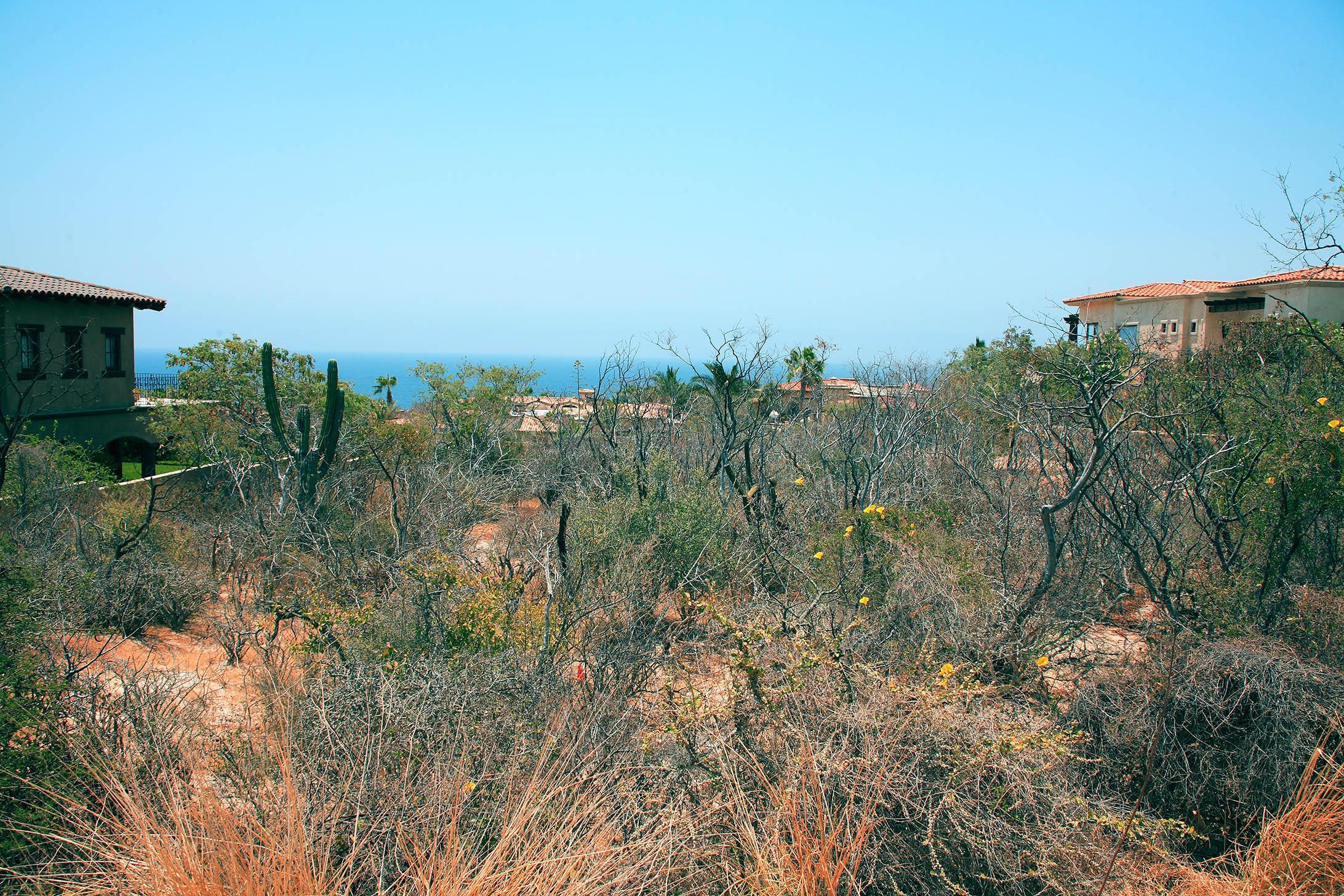 San Jose del Cabo, ,Land,For Sale,Ave. Padre Kino,16-1233