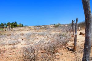 Calle sin Nombre Las Brisas Norte   property for sale