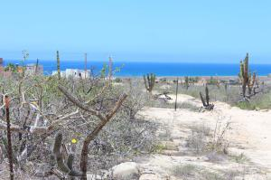Calle sin Nombre Cardon Triangle Lot   property for sale
