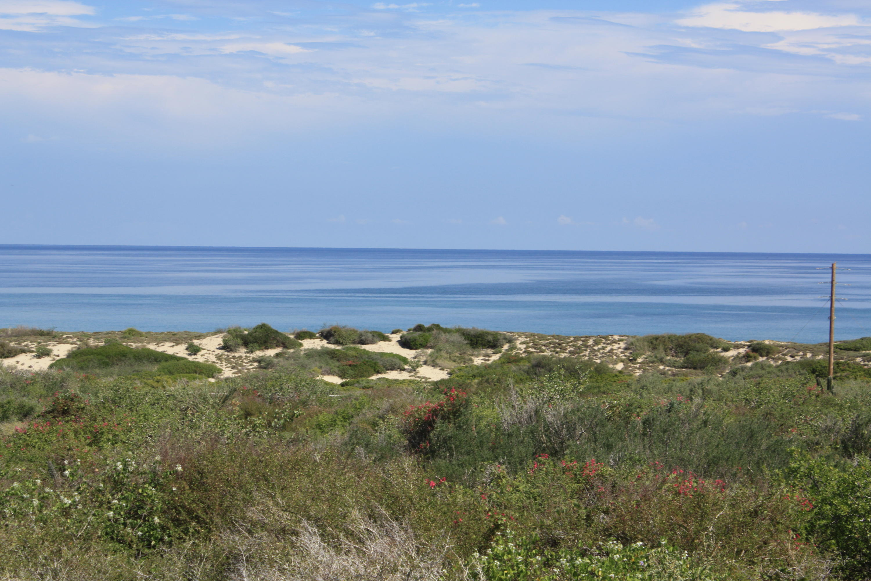 East Cape, ,Land,For Sale,Palmas y Surguidero Fraccion I,16-1662