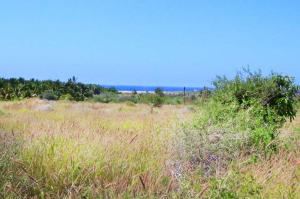 Calle sin Nombre Clemente Lot #17   property for sale