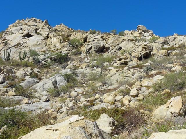 Cabo San Lucas, ,Land,For Sale,Cerrada De Los Gatos,16-2324