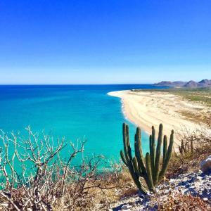 Las Barracas  Cabo Pulmo