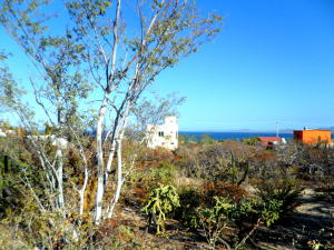 Sin Nombre Tamayo Lot   property for sale