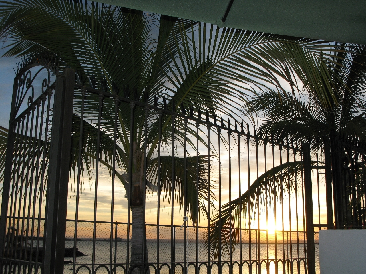 Palmira Marina #4-9