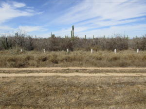 Carr. # 19 Carr. La Paz-Todos Santos Lote Carrizal 6   property for sale