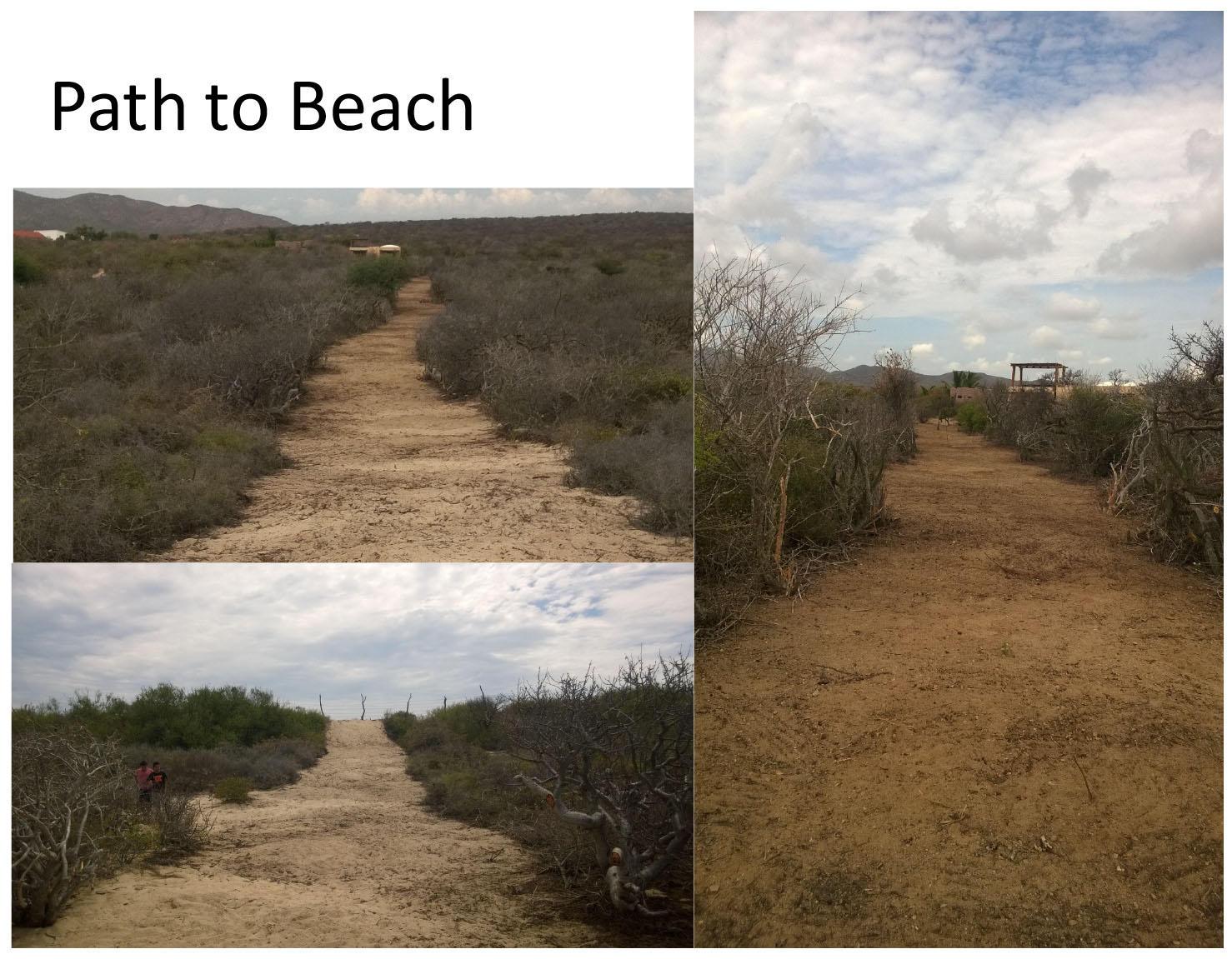 El Rincon beachfront-10