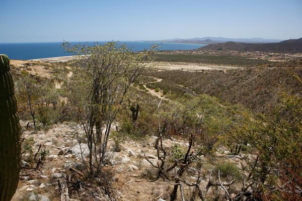 East Cape, ,Land,For Sale,Rancho Cerro and Monte Bello,17-994