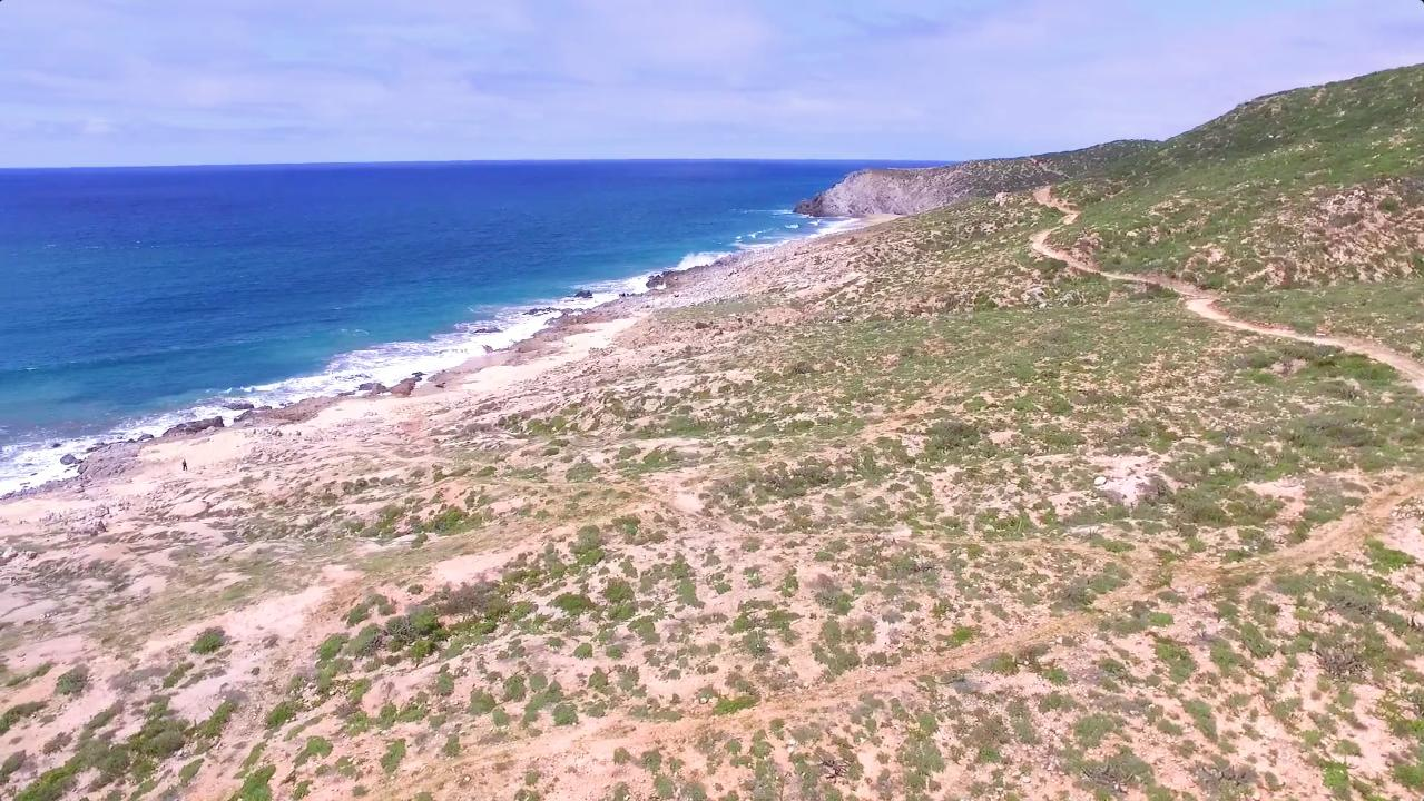 Dos Playa - Migrino-1