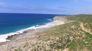 Dos Playa - Migrino