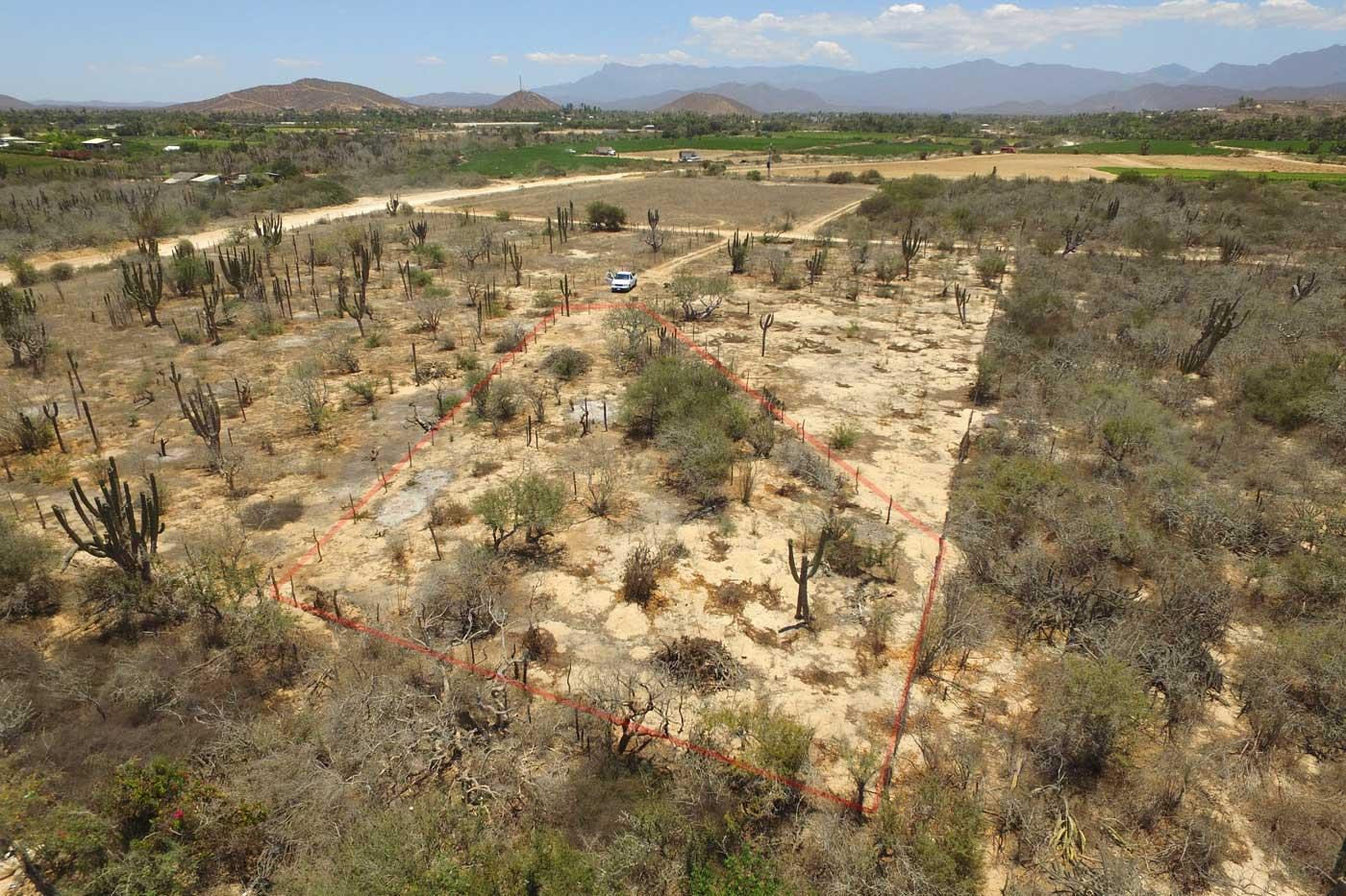 Cactus Garden Lot #1-2