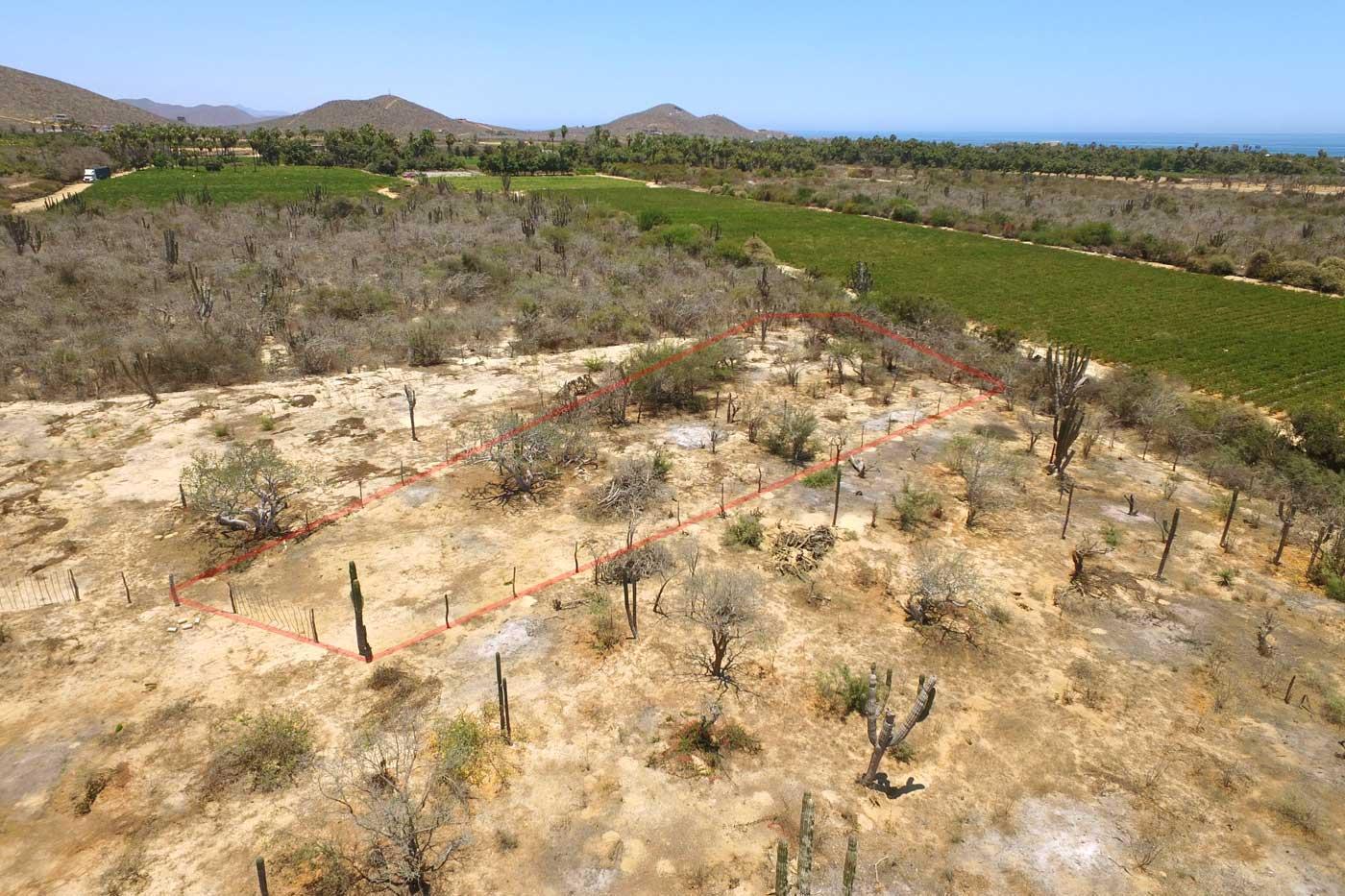 Cactus Garden Lot #1-5